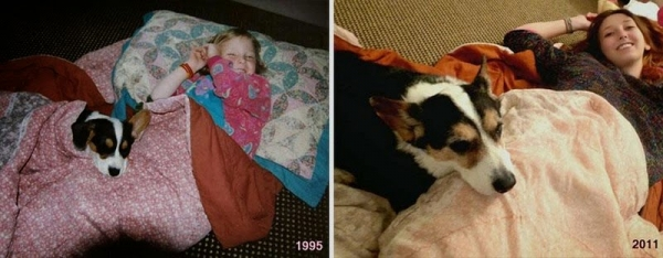 11 adorable pics of dogs growing up 5