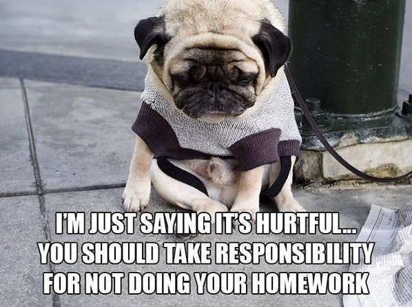 11 introspective and tottaly adorable pugs 11