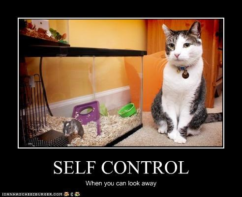 16 animals that are masters of self control 14