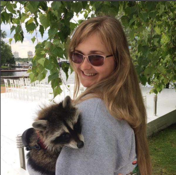 an adoarble place racoon house 10 pictures 2 videos 8