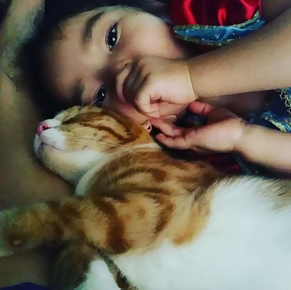 an adorable cat whisperer 10 pictures 8