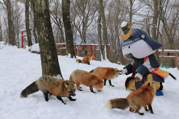 another beautiful place in japan zao fox village 17 pics 1 video 5