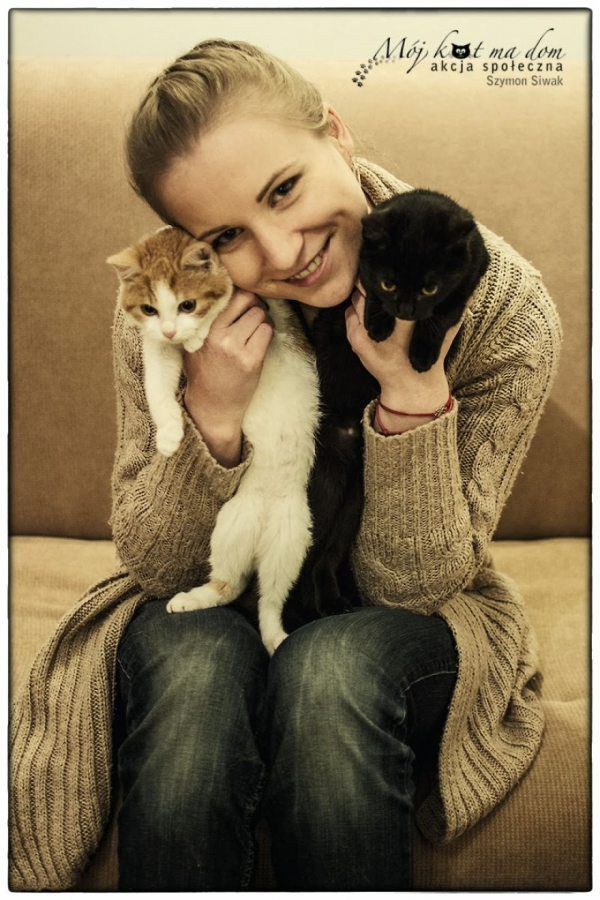 beautiful social campaign promoting adoption of homeless animals 5