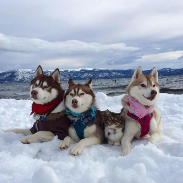 big happy and above all adorable family 15 pictures 15