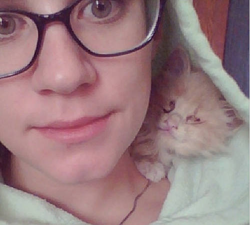 blinkin the blind but snuggliest cat in the world 7 pics 1