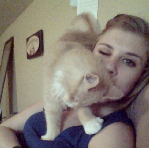 blinkin the blind but snuggliest cat in the world 7 pics 5