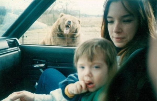 both adorable and awkward animal photobombs 15 pictures 10