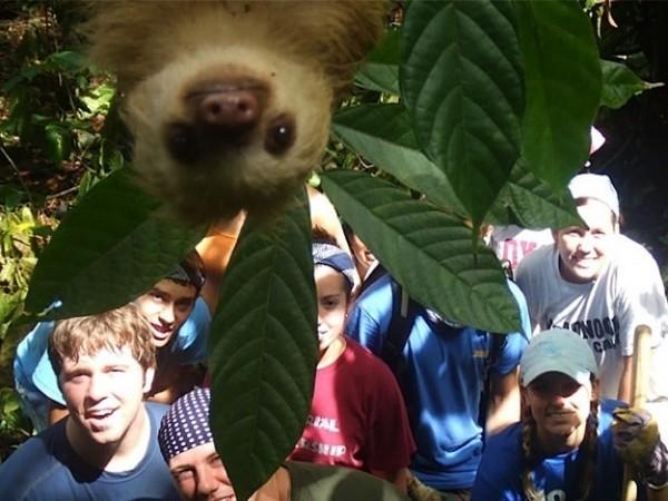 both adorable and awkward animal photobombs 15 pictures 3