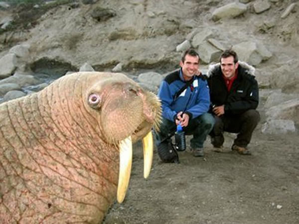 both adorable and awkward animal photobombs 15 pictures 4
