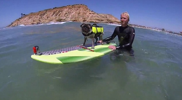 brady and kuli masters of surfing 12 pictures 4