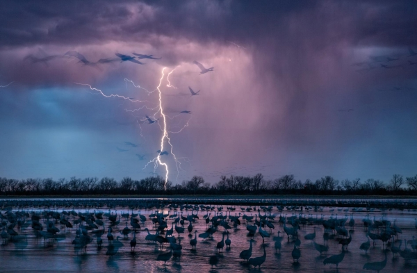 breathtaking compilation of national geographic photos 10 pictures 7