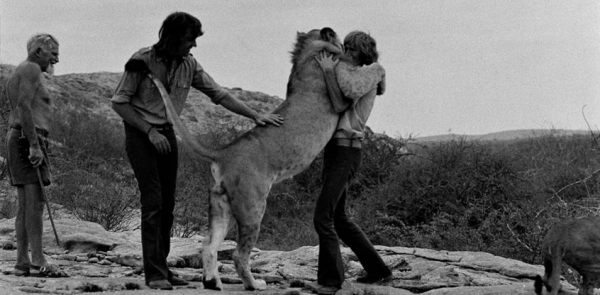 christian the lion who rode in bentley 7