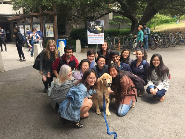 college therapy dogs help students destress during finals 8 pictures 5