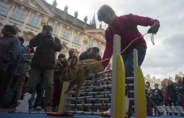 cutest early easter celebration in prague 12