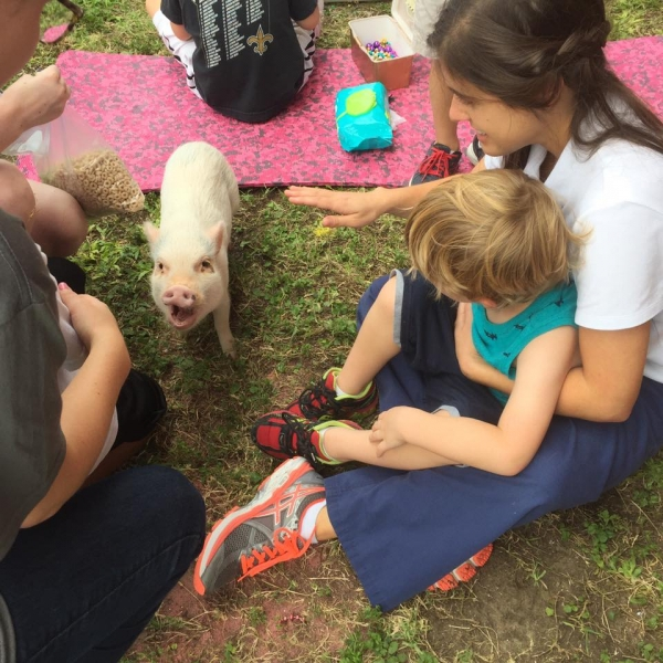 cutest oink a pig activist and a therapist 10 pictures 3