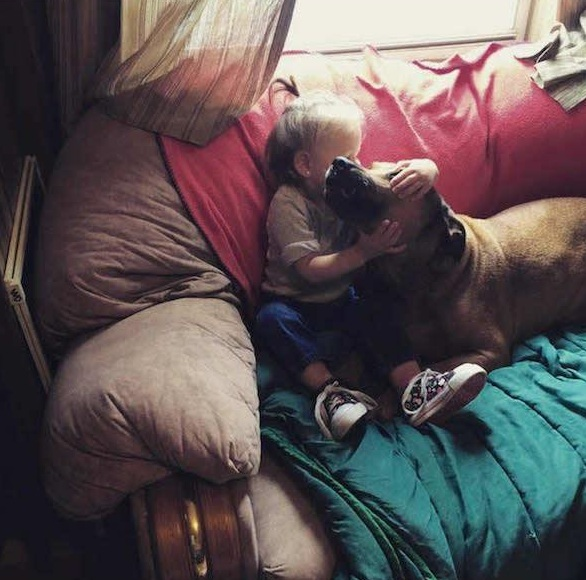 danger for the baby or most faithful companion 13 pictures 3