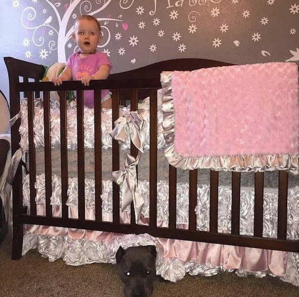 danger for the baby or most faithful companion 13 pictures 7