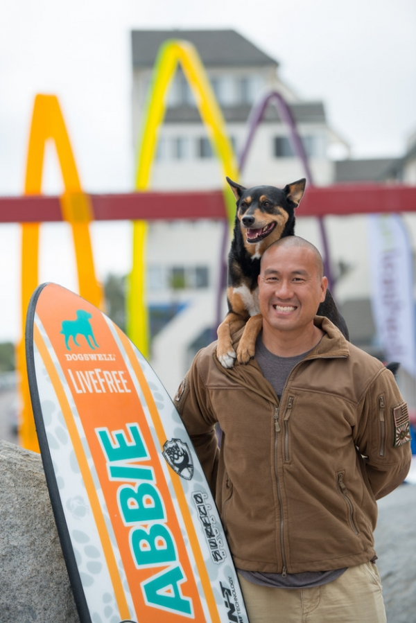 dog surfing is something you shouldnt miss 15 pics 1