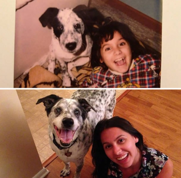 dogs and their owners  before and now  10 pictures 2