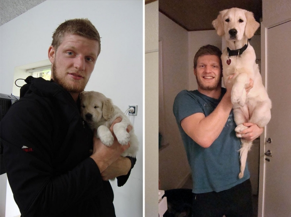dogs and their owners  before and now  10 pictures 6