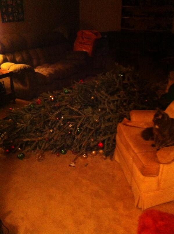 dont be angry at me its christmas 12 pictures 9