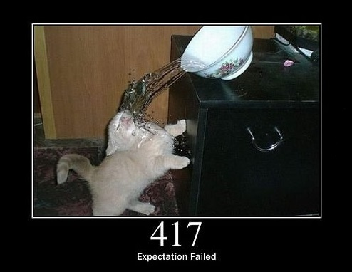 everything can be explained through cats 10
