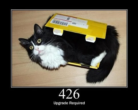 everything can be explained through cats 16