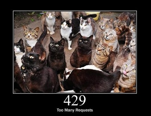 everything can be explained through cats 18