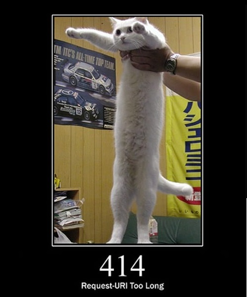 everything can be explained through cats 6