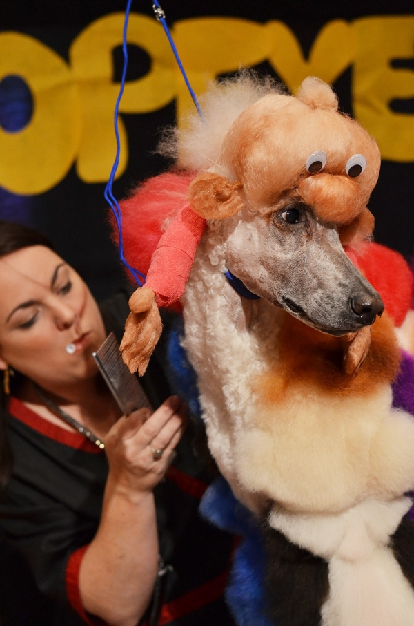 excessive grooming decoration or cruelty 8
