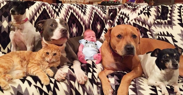 exotic family is growing all the time  11 pictures 10