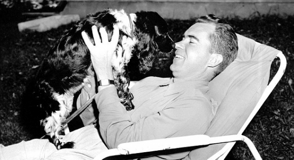 famous hollywood stars and other famous dogs in history 10 pictures 7