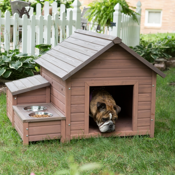 five star pet houses 14 pictures 12