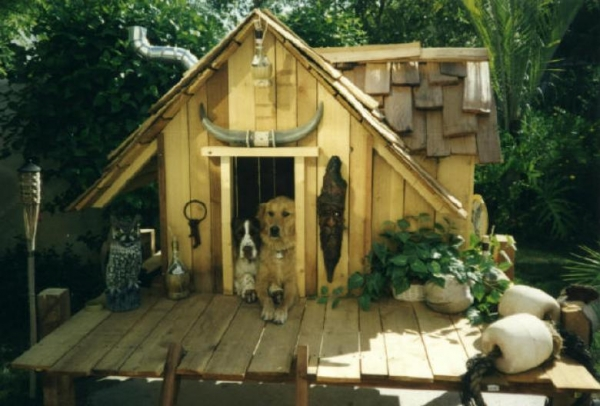 five star pet houses 14 pictures 13