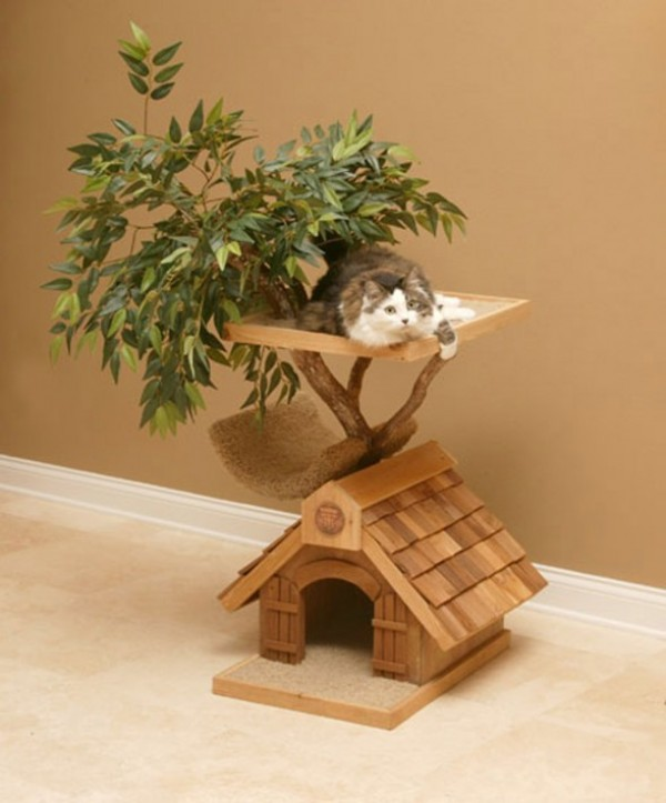 five star pet houses 14 pictures 14