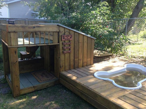 five star pet houses 14 pictures 7