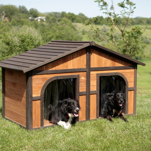 five star pet houses 14 pictures 9