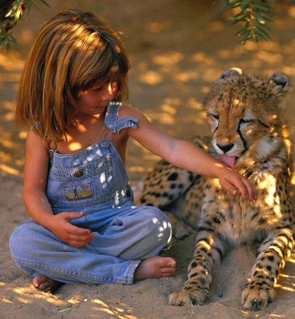 girl that bridged the gap between us and the animals 10 pictures 2