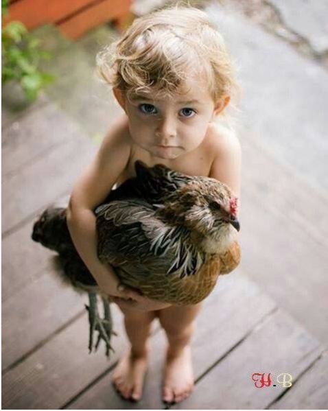 growing up with animals  growing up with love 10 pictures 10