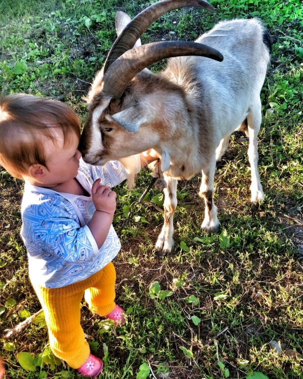 growing up with animals  growing up with love 10 pictures 7
