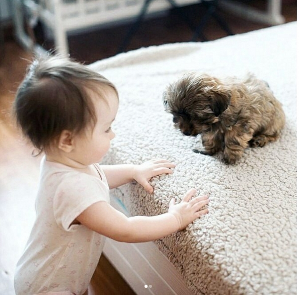 growing up with animals  growing up with love 10 pictures 9