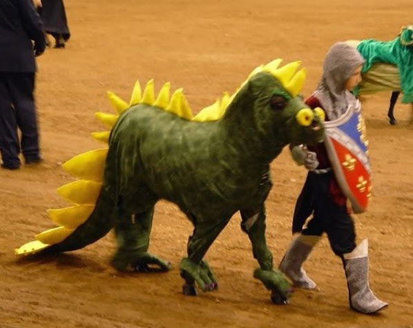 horse costumes living a day in your fantasy 24 pics 1