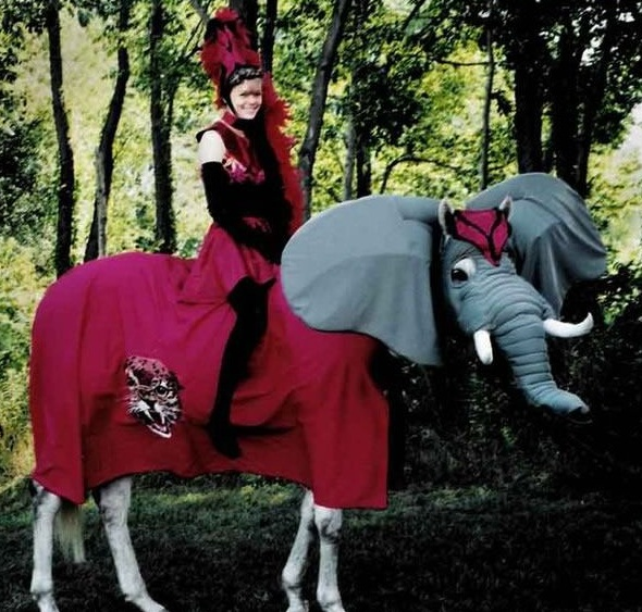 horse costumes living a day in your fantasy 24 pics 11