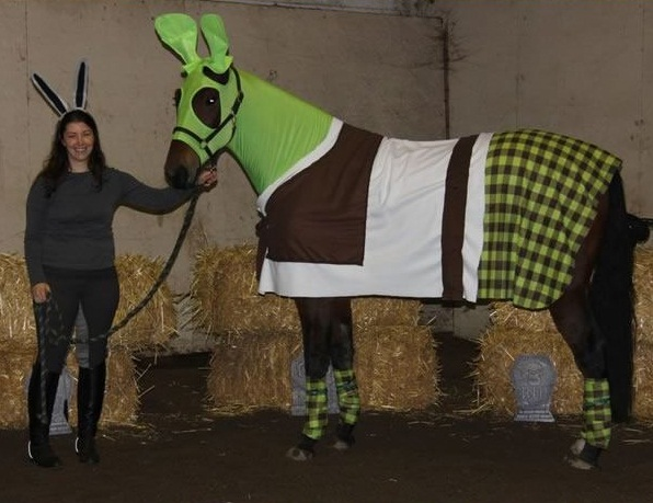 horse costumes living a day in your fantasy 24 pics 13