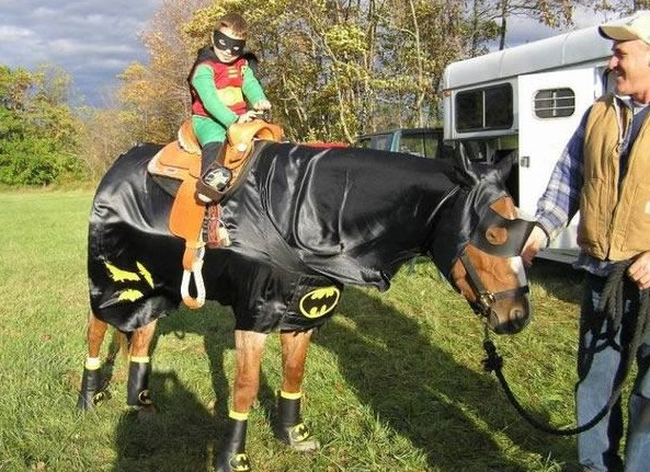 horse costumes living a day in your fantasy 24 pics 14
