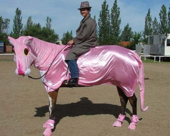 horse costumes living a day in your fantasy 24 pics 15