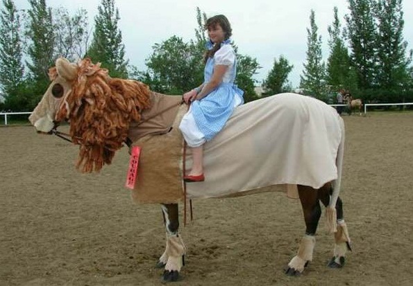 horse costumes living a day in your fantasy 24 pics 21