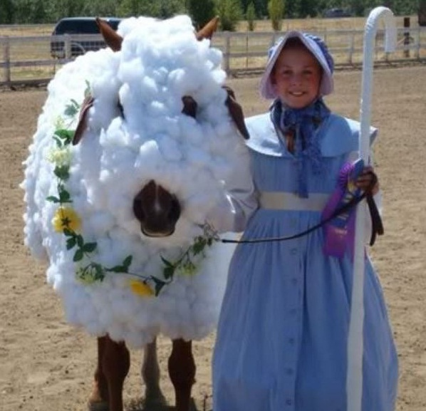horse costumes living a day in your fantasy 24 pics 5
