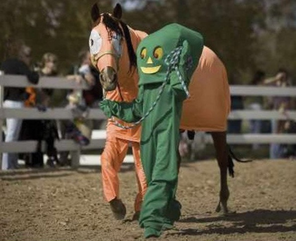 horse costumes living a day in your fantasy 24 pics 7