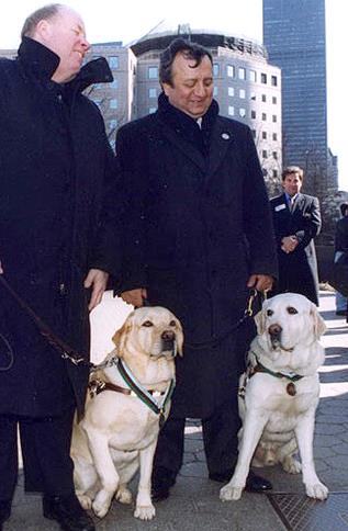 medal of honor for our animal friends 10 pictures 6